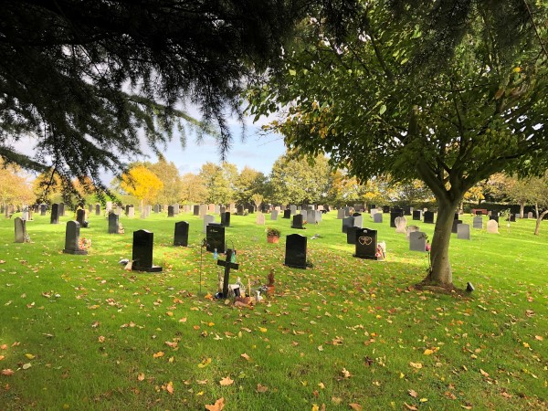 Family upset as council moves flowers and bans ornaments in cemetery 'tidy-up'