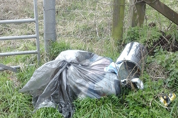 Woman dumped used nappies in country lane near Winterbourne