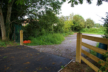 Allotments to open despite thefts